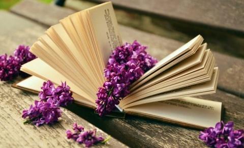 9 LIBROS INSPIRADORES SOBRE INNOVACIÓN SOCIAL