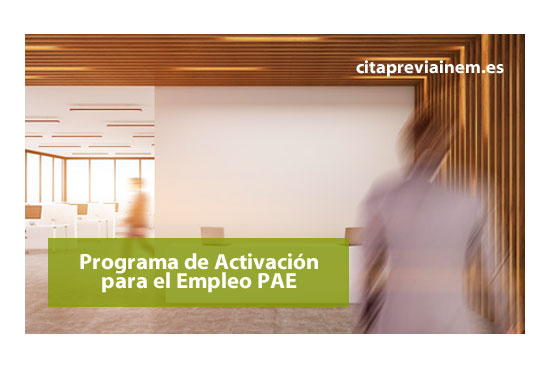 Nuevos requisitos para el Programa de Activación de Empleo (PAI)